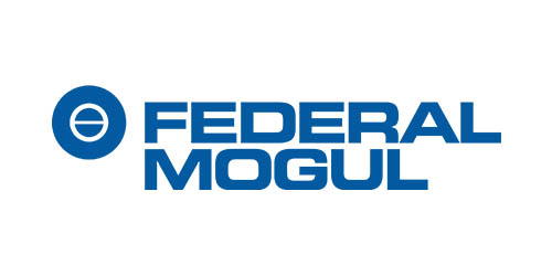 Referenz Federal Mogul